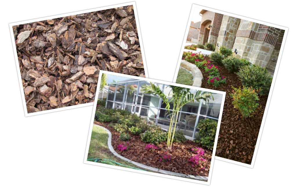 Landscaping,Mulch at Longwood Gardens Nursery and Landscaping, Orlando.